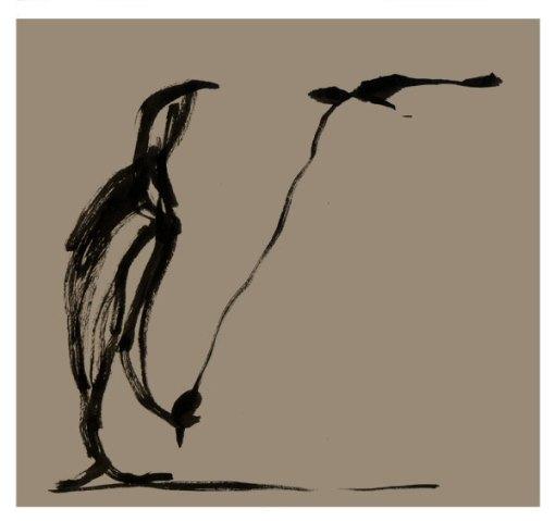 _oiseau-de-compagnie